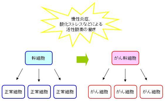 幹細胞のがん幹細胞化
